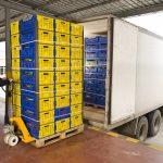 Pārtikas produktu un dzīvnieku imports un eksports