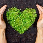 Dabas un vides aizsardzība